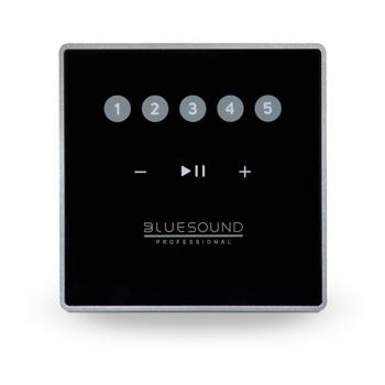 Bluesound Professional CP100