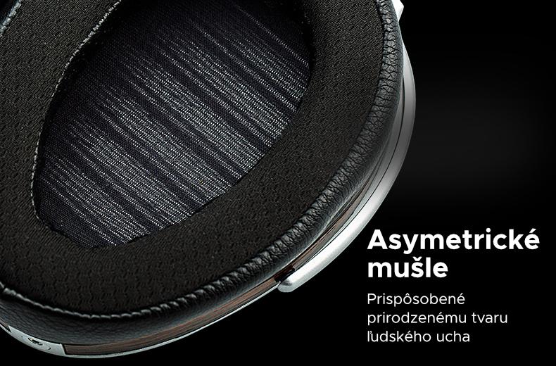 asymetrické mušle